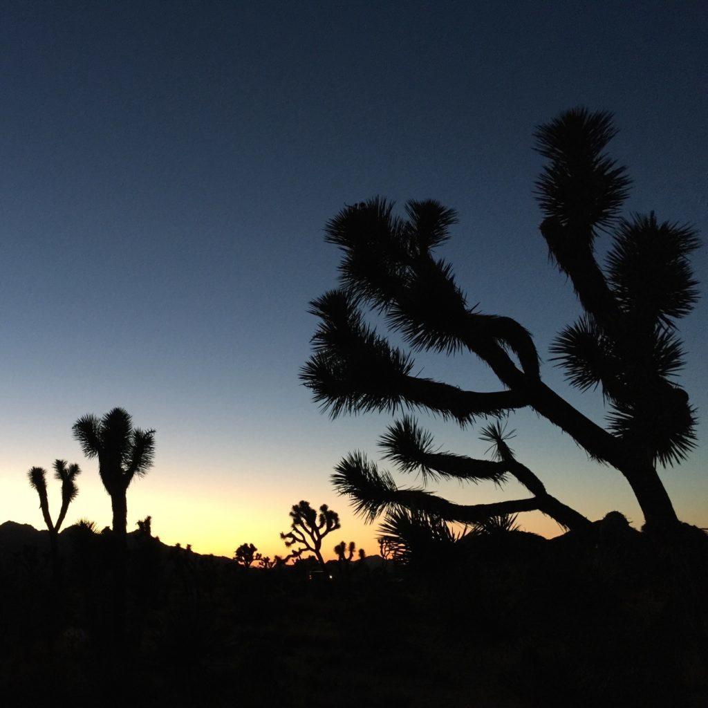 desert-night-ipad-pro-1024x1024